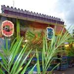 Safari Trip - kermis Budel 2005 (2)